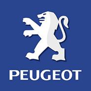Kit de reparatie turbina Peugeot