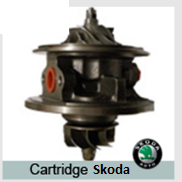 Cartridge Skoda